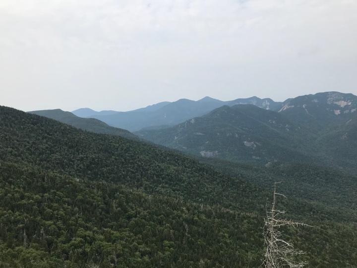 Dial Mountain View #1