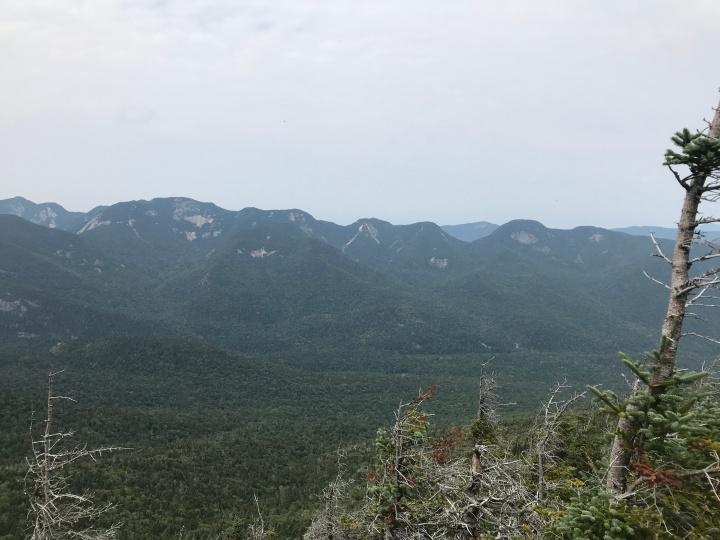 Dial Mountain View #2