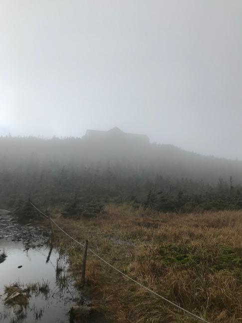 Greenleaf hut in the fog