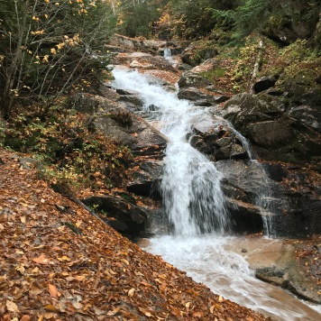 Waterfall on trail