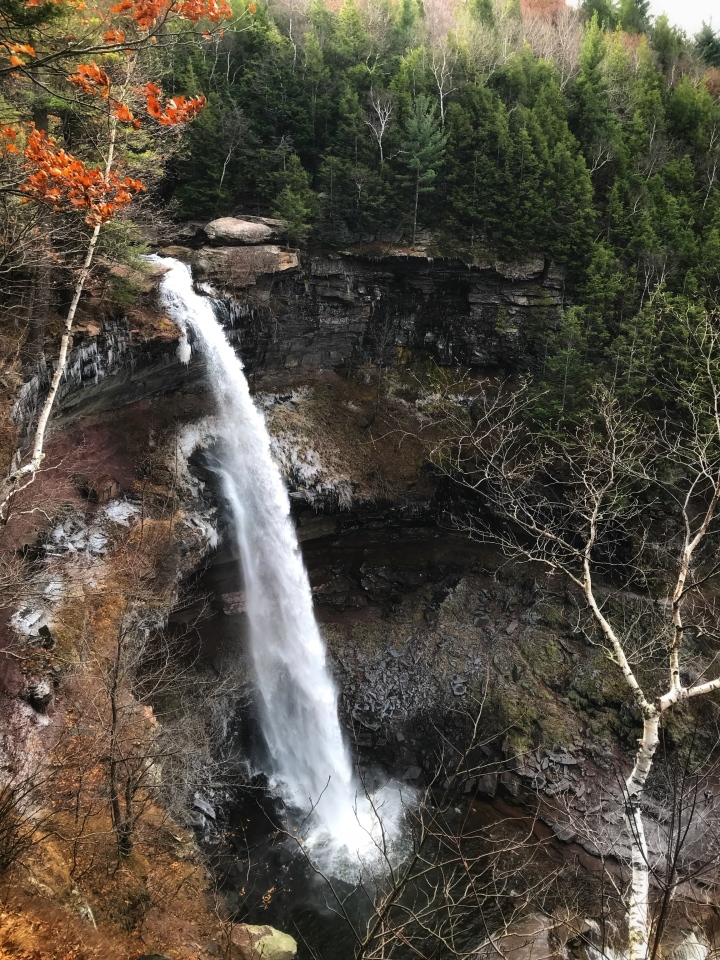 Upper Falls From Viewing Platform