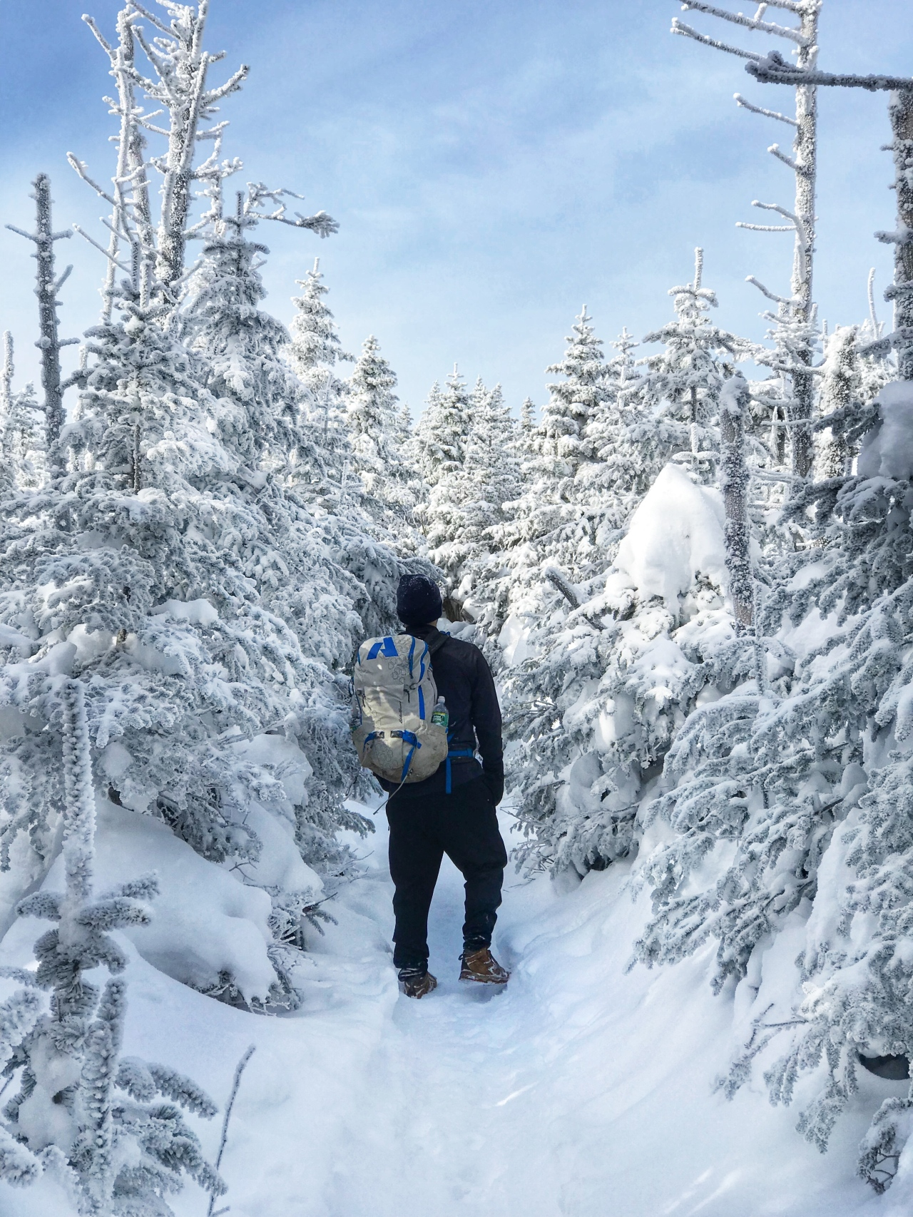 Walking in Snowy Trees on Whiteface