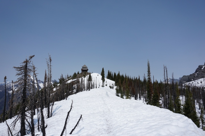 Snow and Mt Brown Fire-tower