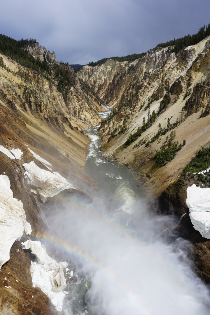 Grand Canyon of Yellowstone with rainbow