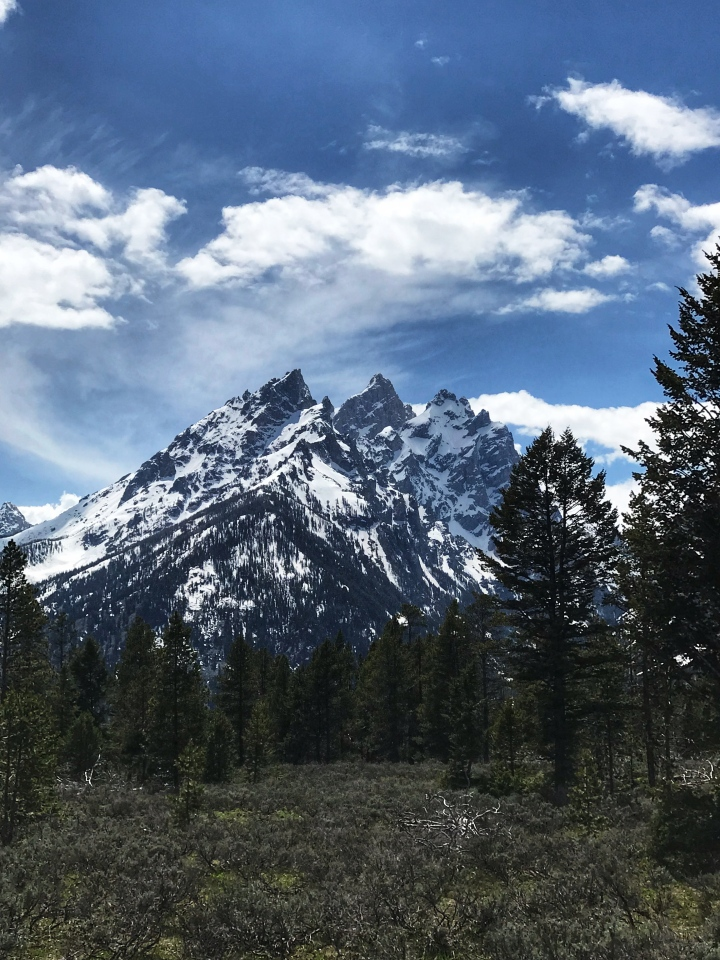 Tetons with blue sky edit