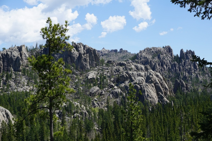 View of Black Elk Peak and Harney Lookout