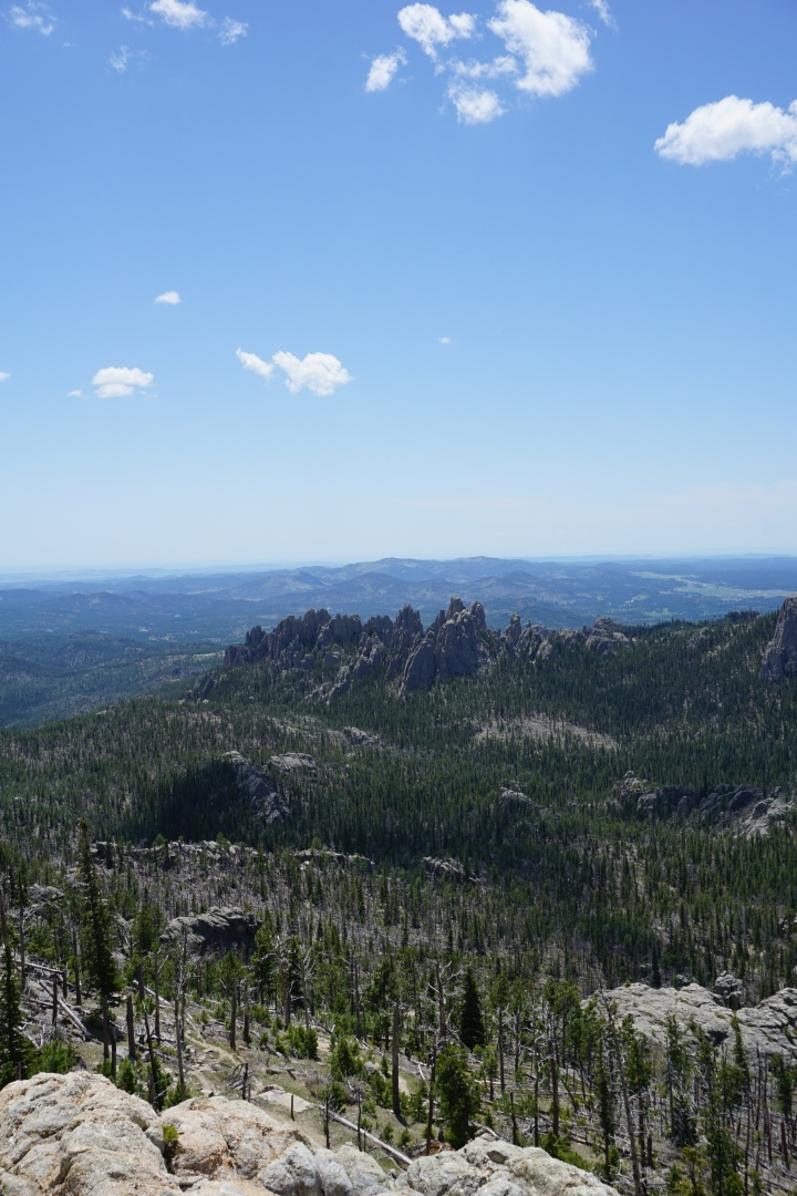 Views from Summit of Black Elk Peak