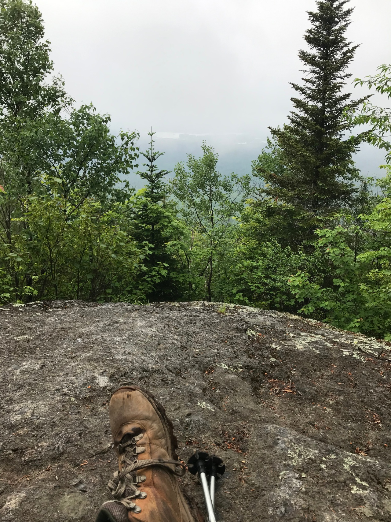 Haystack Mountain: SaranacRegion