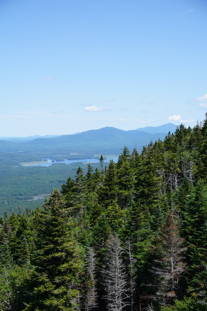 View of Whiteface from Ampersand