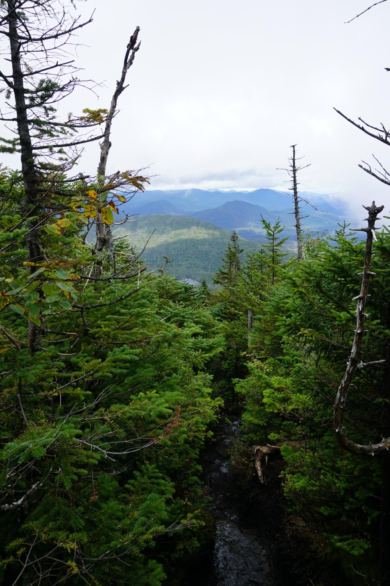 Panther Peak: A Long, MUDDYHike